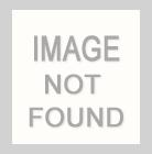 """M1105 / RUST / """"DAISIES"""" 100% POLYESTER WOVEN JACQUARD"""