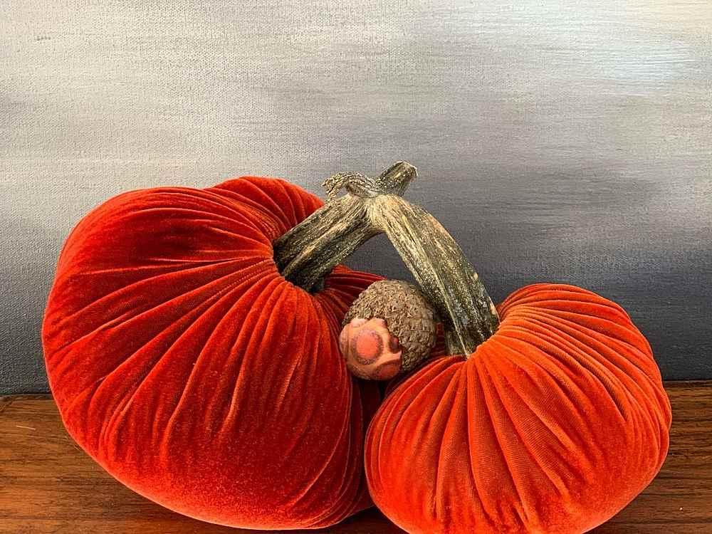 "PUMPKIN D / D / Pillow/Accessory Pic Courtesy of Plush Pumpkin"""